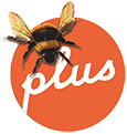 translateplus-logostandard_Bee-TRANSPARENT-115x115